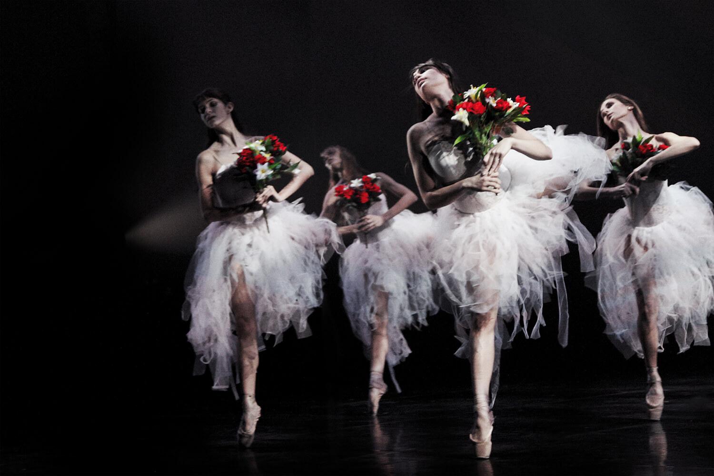 Ballet David Campos. Dones d'aigua
